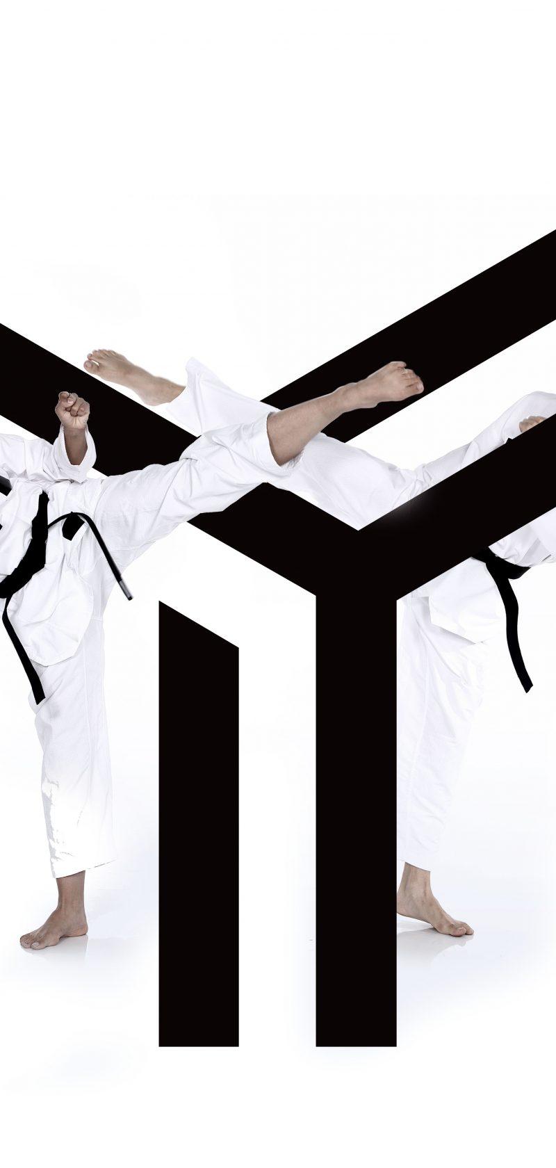 Taekwondo Vlaanderen